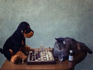 Jugando al ajedrez