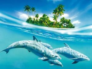 Delfines junto a una isla