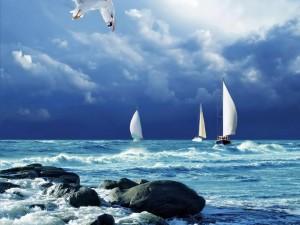 Yates en un mar agitado