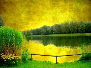 Lago en la naturaleza