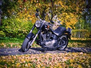 Una Harley-Davidson vista en otoño