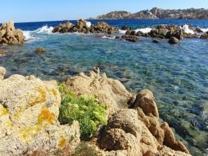 Isla La Maddalena, Italia