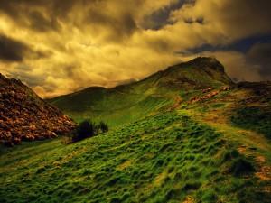 Senda en la montaña