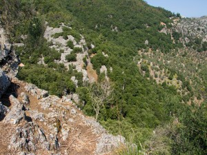 Pendiente en la sierra de Tramontana (Mallorca, España)