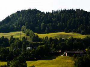 Verdes colinas en Kernhof (Austria)