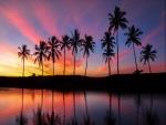 Mar y palmeras al amanecer