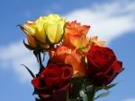 Encantador ramo de rosas de varios colores