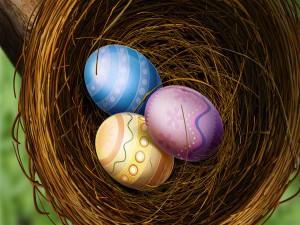 Huevos de pascua en un nido