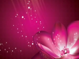 Una flor irradiando luz