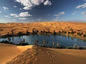 Oasis en el desierto de Libia