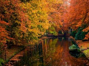 Bote en un río rodeado de árboles en otoño