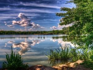 Belleza del lago