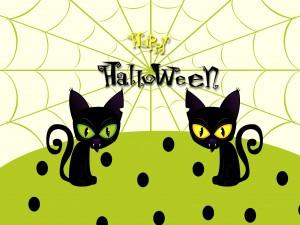"Los gatos vampiro te desean ""Feliz Halloween"""