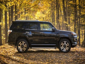 Toyota 4Runner Limited en un bosque