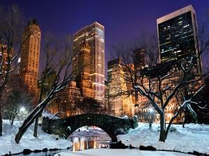 Invierno en el Central Park (Nueva York)