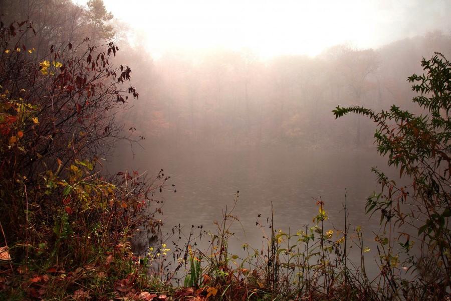 Niebla sobre el río en otoño