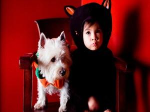Niño y perro preparados para la noche de Halloween
