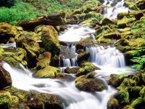 Pequeñas cascadas sobre las rocas