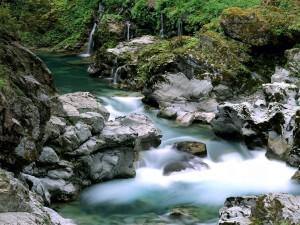 Rocas a orillas del río