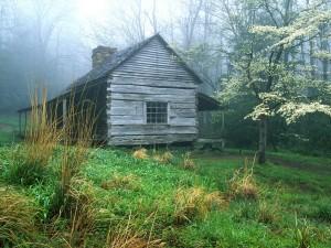 Cabaña de madera en un bosque