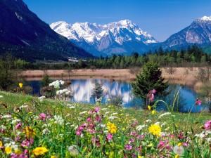 Primavera en el río Loisach (Alemania)