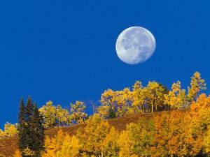 Luna llena en otoño