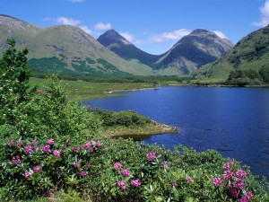 Verdes montañas junto a un lago
