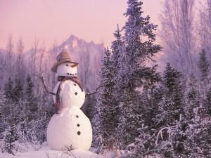 Un muñeco de nieve en el campo