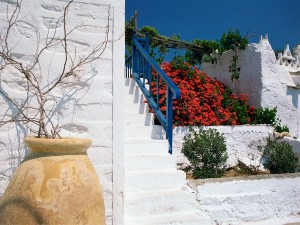 Jardín en la fachada de una casa