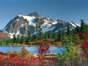 Bonita montaña junto a un lago