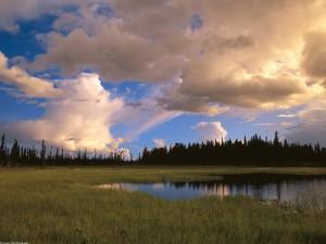 Cielo nuboso sobre una laguna
