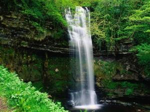 Una bonita cascada