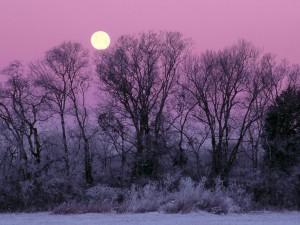 Luna llena en invierno