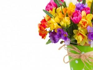 Narcisos, tulipanes y fresias en un recipiente