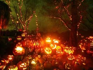 Calabazas talladas e iluminadas en Halloween
