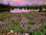 Hermoso amanecer sobre el lago y las montañas