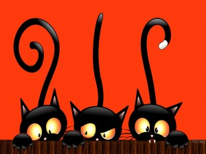 Tres gatos negros en la noche de Halloween