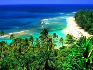 Hermosa playa en Hawái