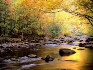 Los colores del otoño reflejados en el río