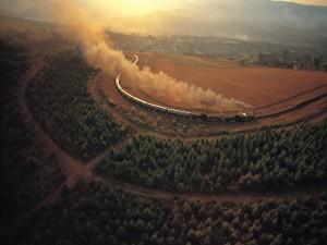 Tren circulando por un campo