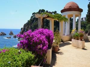 Arbustos en flor frente al mar