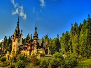 Hermoso castillo en un bosque