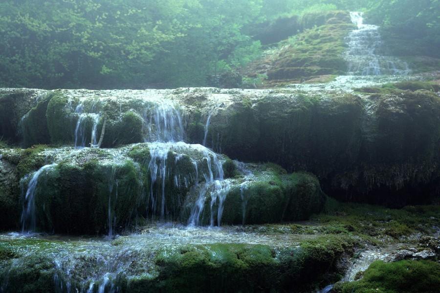 Agua sobre el musgo