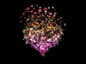 Las mariposas van formando un corazón