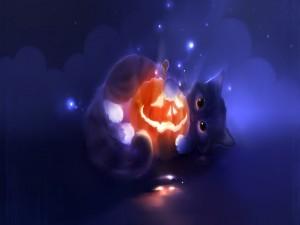 Gatito con una calabaza de Halloween entre sus patas