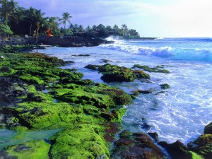 Costa Kona (Hawái)