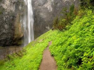 Sendero hacia una cascada