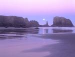 Luna iluminando una playa