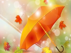 Sombrilla y hojas otoñales