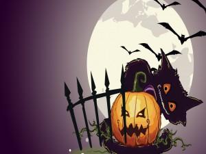 Gato sobre una calabaza en la noche de Halloween